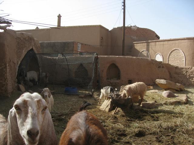 hotel y cabras en garmeh