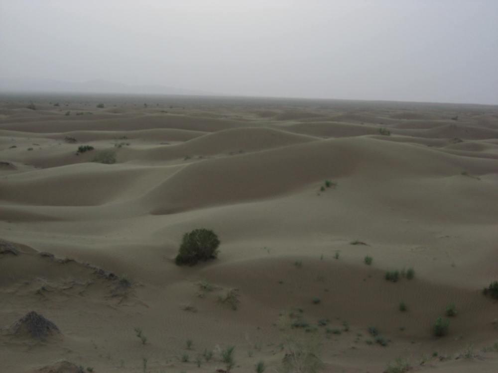 dunas mesr