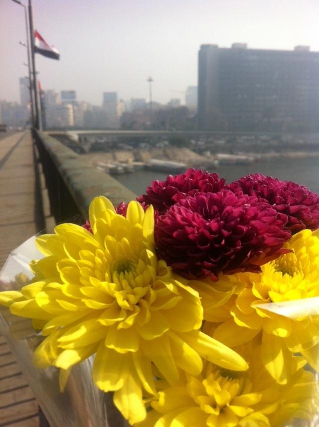 Flores en el Nilo