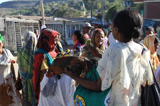 mercado pollo harar etiopia