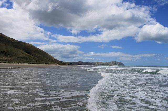nueva zelanda isla norte