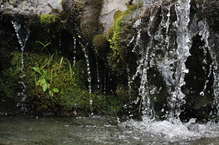 agua nz