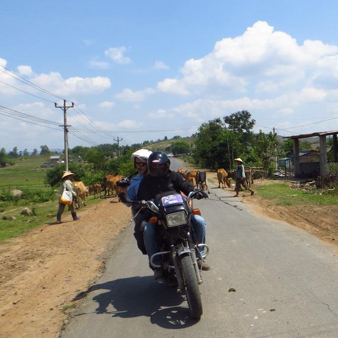 easy rider vietnam